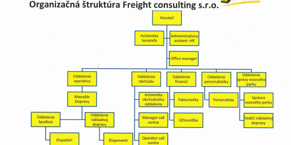 Organizational structure of the company